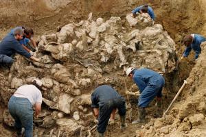 srebrenica-genocide-victims